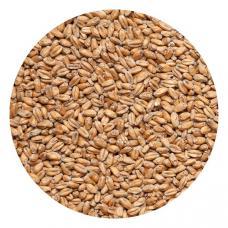 Пшеница для самогона, 1 кг