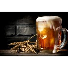 30 удивительных фактов о пиве, заставляющих уважать напиток